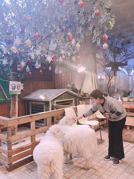 3 cafés à thème de Séoul à ne pas manquer !